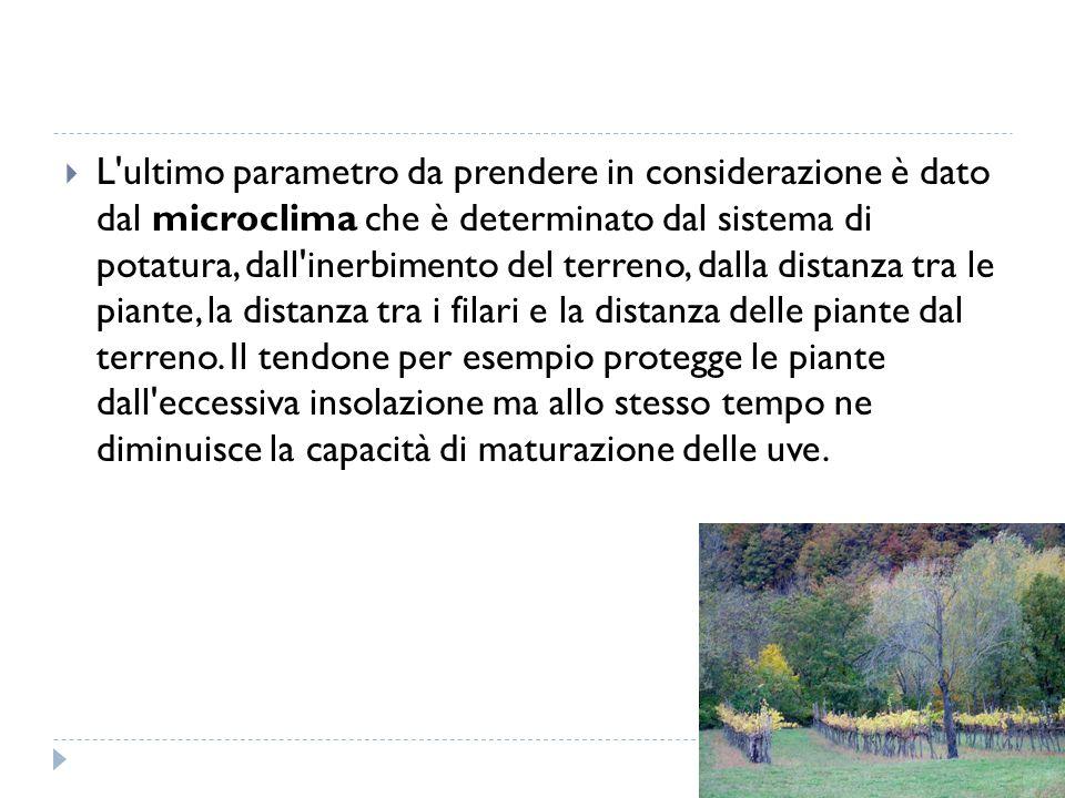  L'ultimo parametro da prendere in considerazione è dato dal microclima che è determinato dal sistema di potatura, dall'inerbimento del terreno, dall