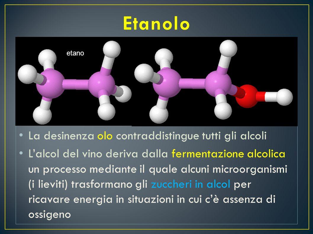 È noto che il vino è una bevanda alcolica L 'alcol che conferisce questa caratteristica al vino prende il nome di etanolo I l nome deriva dall'etano C