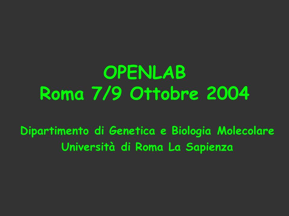 OPENLAB Roma 7/9 Ottobre 2004 Dipartimento di Genetica e Biologia Molecolare Università di Roma La Sapienza