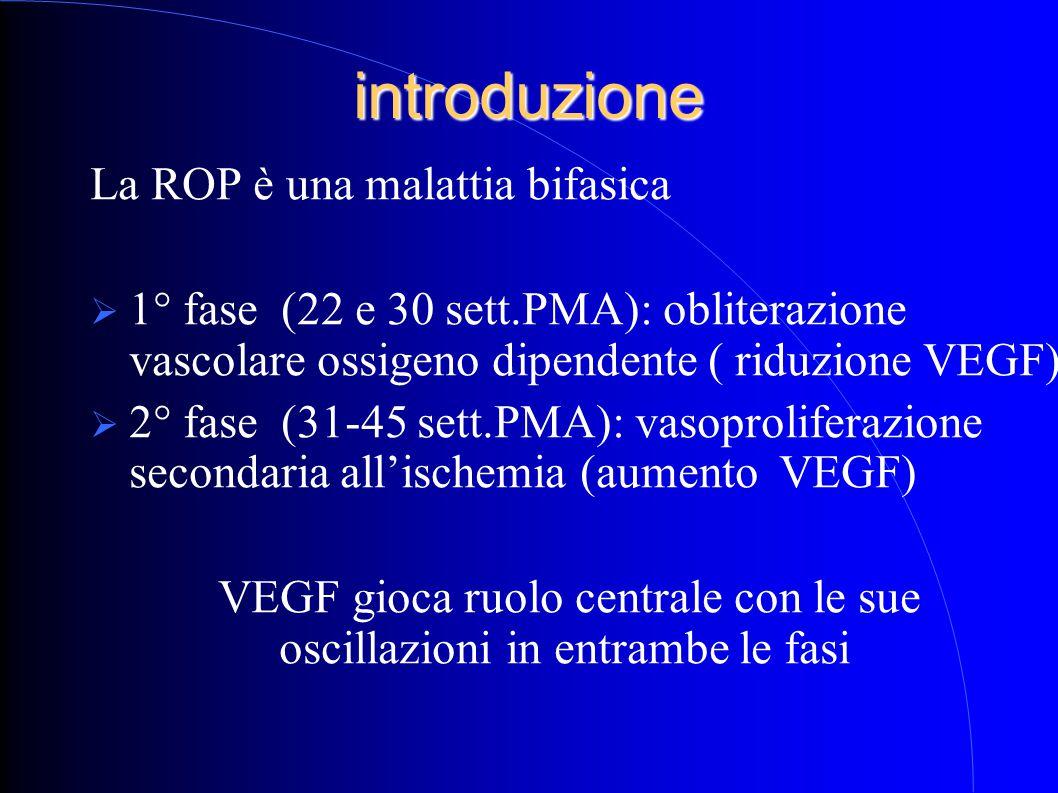 introduzione La ROP è una malattia bifasica  1° fase (22 e 30 sett.PMA): obliterazione vascolare ossigeno dipendente ( riduzione VEGF)  2° fase (31-45 sett.PMA): vasoproliferazione secondaria all'ischemia (aumento VEGF) VEGF gioca ruolo centrale con le sue oscillazioni in entrambe le fasi