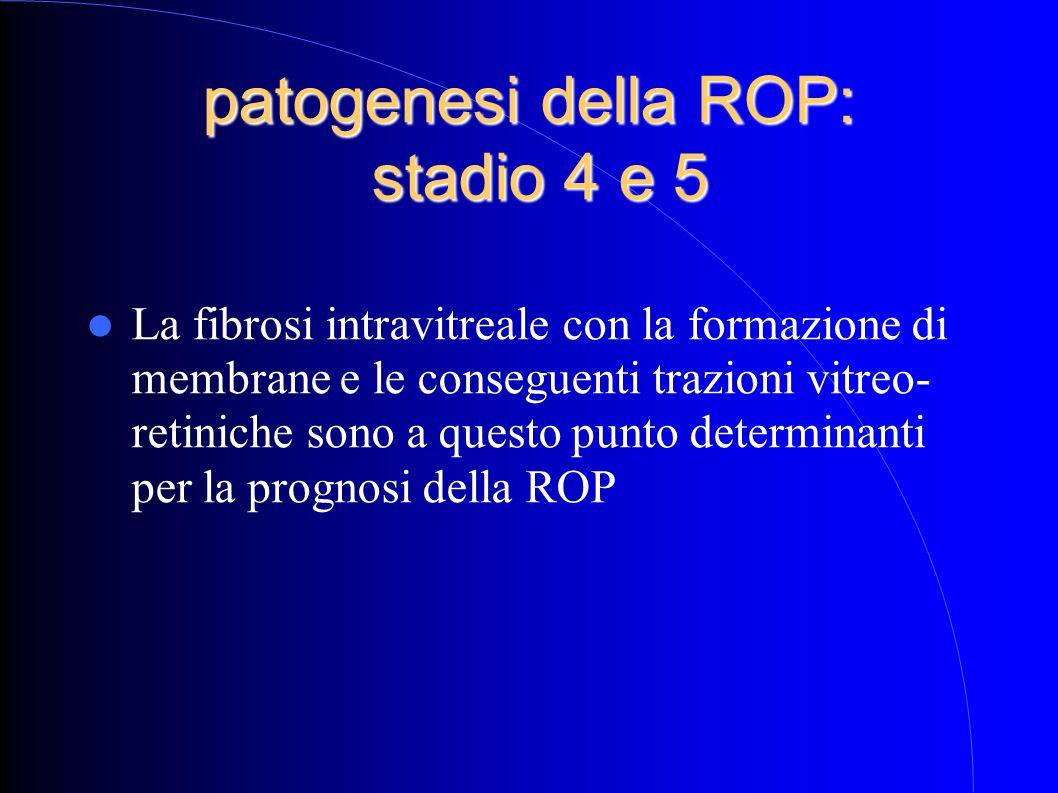 patogenesi della ROP: stadio 4 e 5 La fibrosi intravitreale con la formazione di membrane e le conseguenti trazioni vitreo- retiniche sono a questo pu