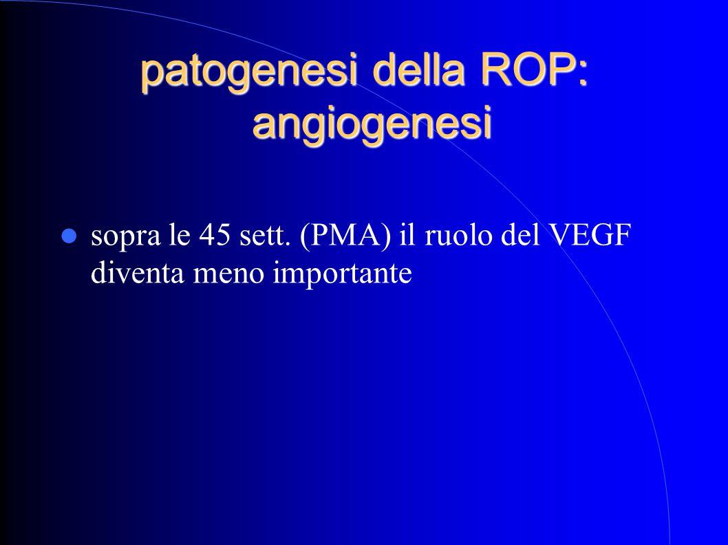 patogenesi della ROP: angiogenesi sopra le 45 sett. (PMA) il ruolo del VEGF diventa meno importante