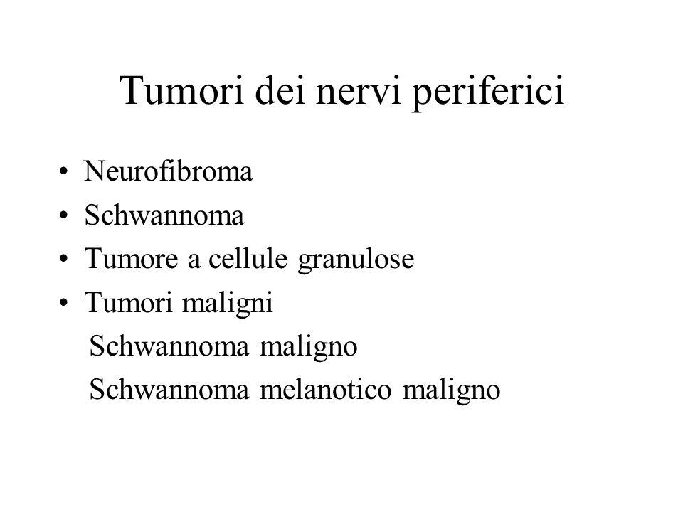 Tumori dei nervi periferici Neurofibroma Schwannoma Tumore a cellule granulose Tumori maligni Schwannoma maligno Schwannoma melanotico maligno