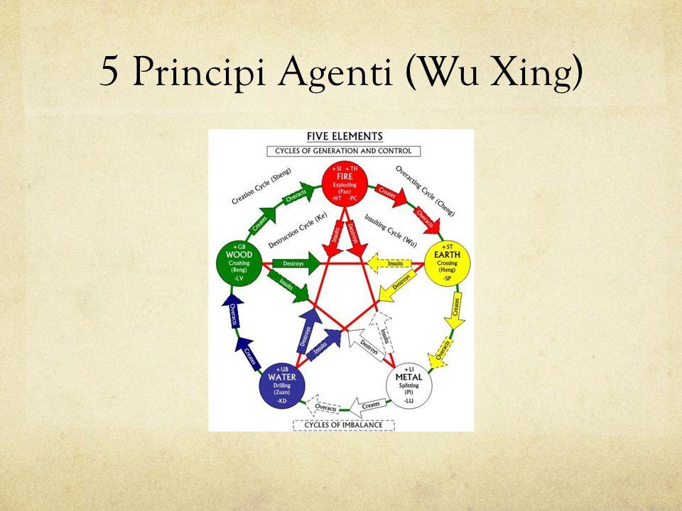 5 Principi Agenti (Wu Xing)