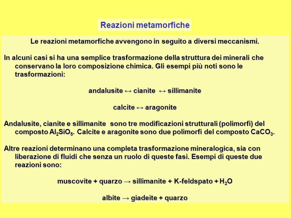 I minerali metamorfici I minerali metamorfici sono costituiti da un gran numero di specie.