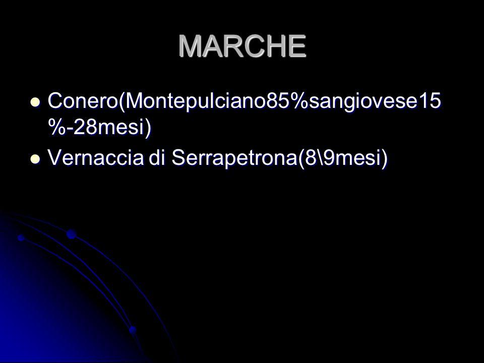 MARCHE Conero(Montepulciano85%sangiovese15 %-28mesi) Conero(Montepulciano85%sangiovese15 %-28mesi) Vernaccia di Serrapetrona(8\9mesi) Vernaccia di Ser