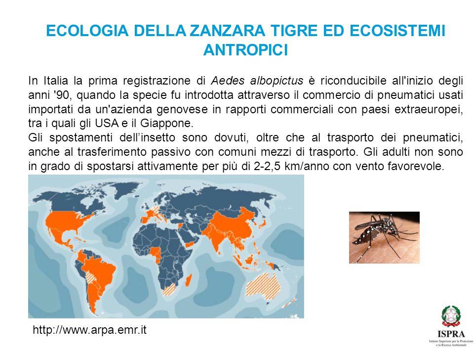 ECOLOGIA DELLA ZANZARA TIGRE ED ECOSISTEMI ANTROPICI In Italia la prima registrazione di Aedes albopictus è riconducibile all'inizio degli anni '90, q