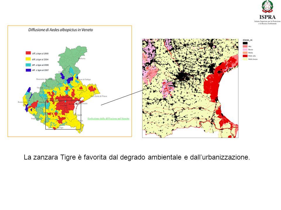 La zanzara Tigre è favorita dal degrado ambientale e dall'urbanizzazione.