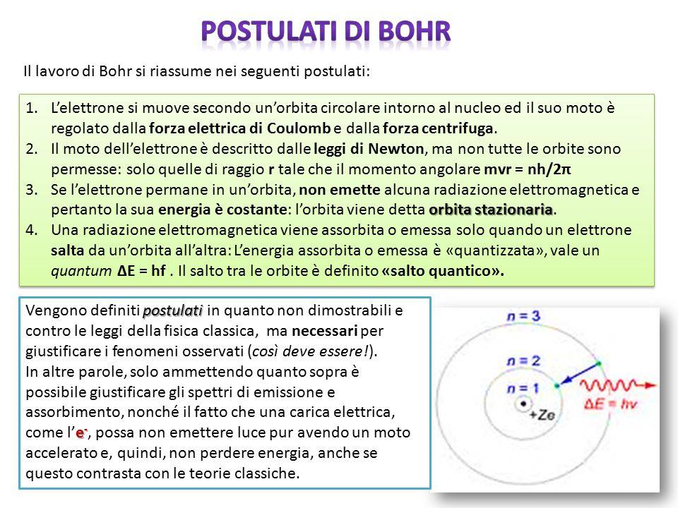 1.L'elettrone si muove secondo un'orbita circolare intorno al nucleo ed il suo moto è regolato dalla forza elettrica di Coulomb e dalla forza centrifu