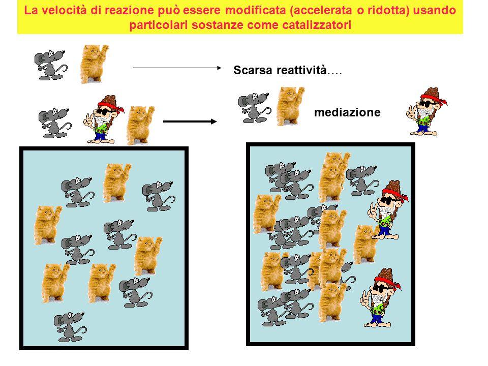 La velocità di reazione può essere modificata (accelerata o ridotta) usando particolari sostanze come catalizzatori Scarsa reattività….