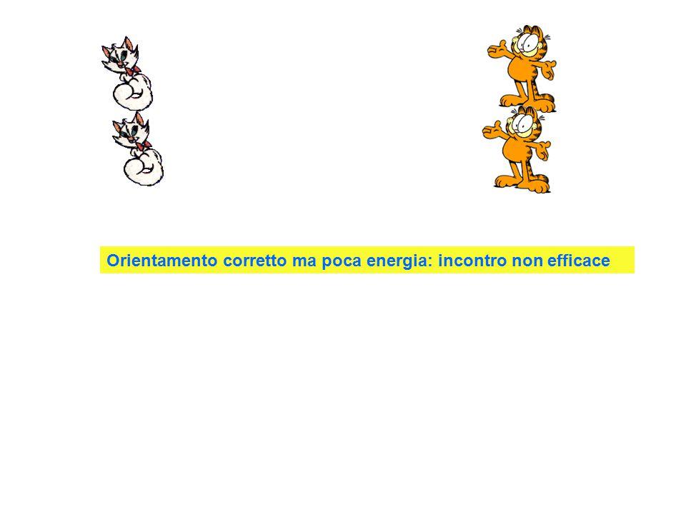 Orientamento corretto con energia: incontro efficace