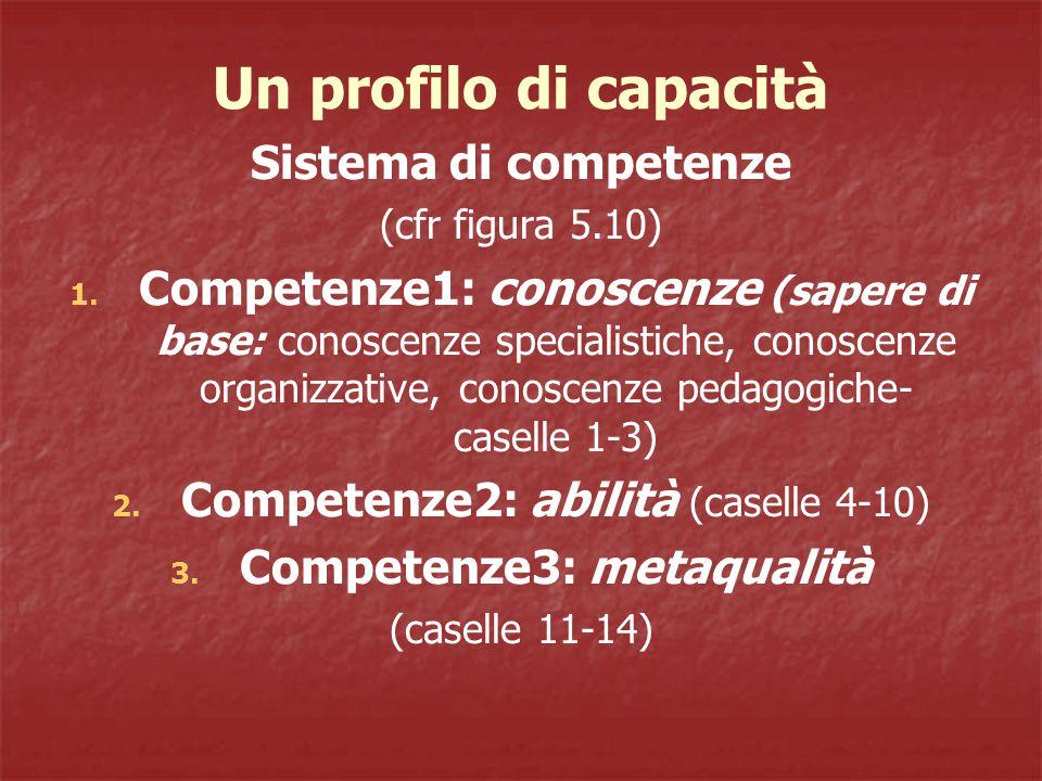 Un profilo di capacità Sistema di competenze (cfr figura 5.10) 1.