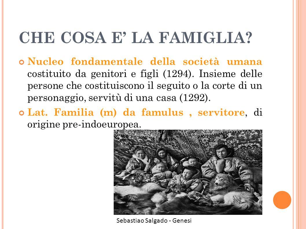 CHE COSA E' LA FAMIGLIA? Nucleo fondamentale della società umana costituito da genitori e figli (1294). Insieme delle persone che costituiscono il seg