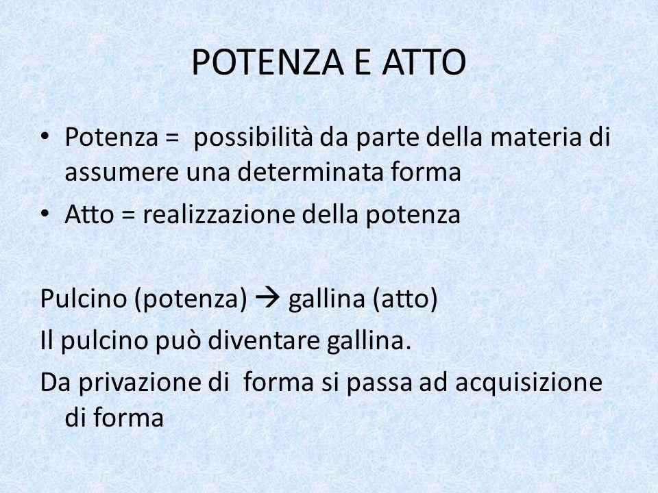 POTENZA E ATTO Potenza = possibilità da parte della materia di assumere una determinata forma Atto = realizzazione della potenza Pulcino (potenza)  g