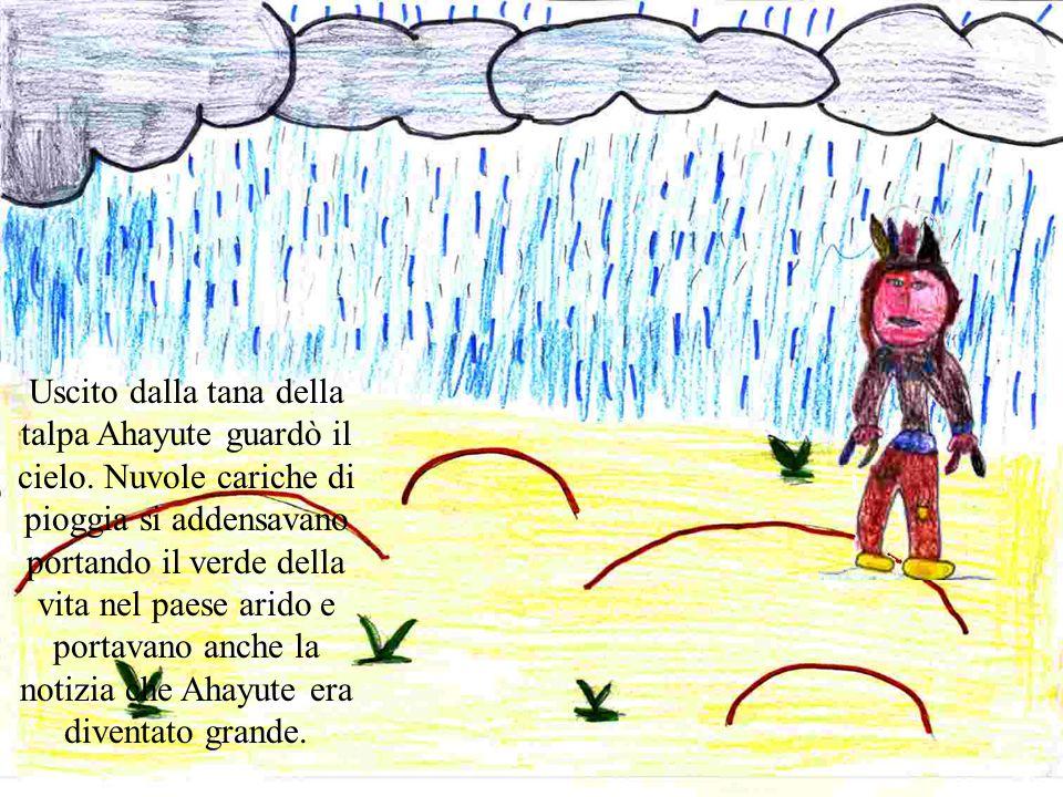 Uscito dalla tana della talpa Ahayute guardò il cielo. Nuvole cariche di pioggia si addensavano portando il verde della vita nel paese arido e portava