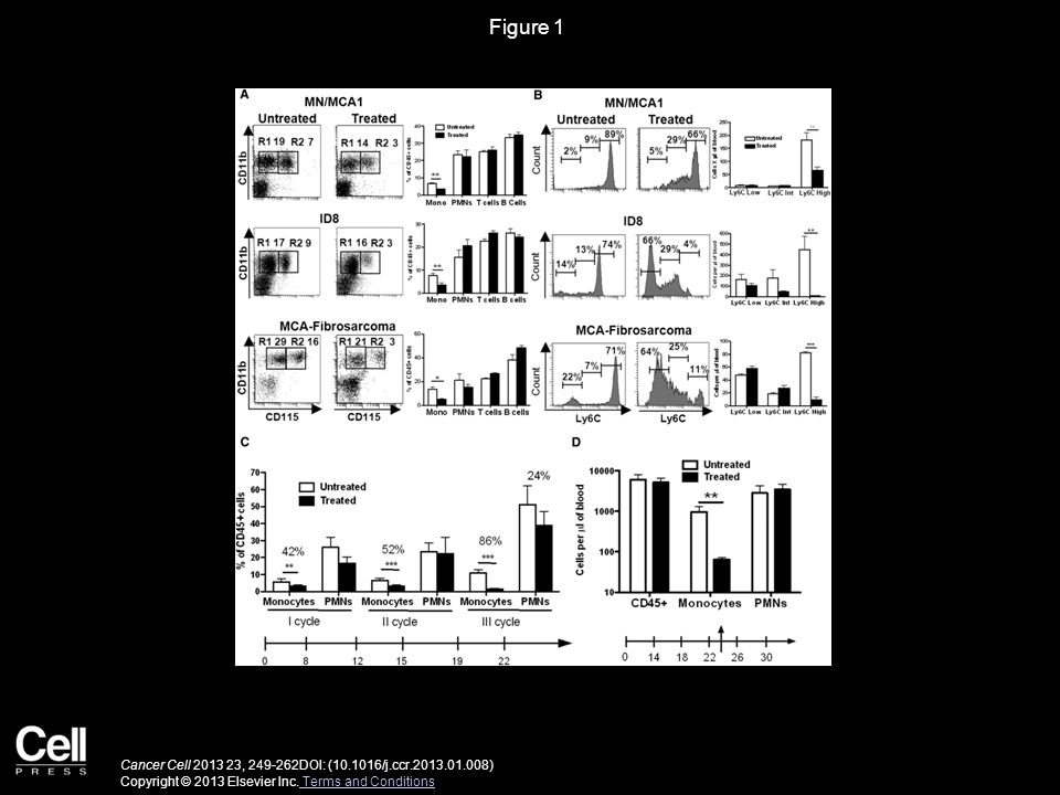 Figure 1 Cancer Cell 2013 23, 249-262DOI: (10.1016/j.ccr.2013.01.008) Copyright © 2013 Elsevier Inc. Terms and Conditions Terms and Conditions