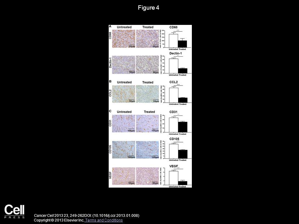 Figure 4 Cancer Cell 2013 23, 249-262DOI: (10.1016/j.ccr.2013.01.008) Copyright © 2013 Elsevier Inc. Terms and Conditions Terms and Conditions