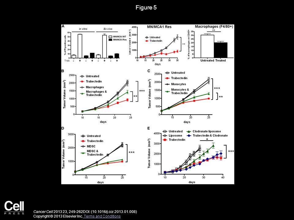 Figure 5 Cancer Cell 2013 23, 249-262DOI: (10.1016/j.ccr.2013.01.008) Copyright © 2013 Elsevier Inc.