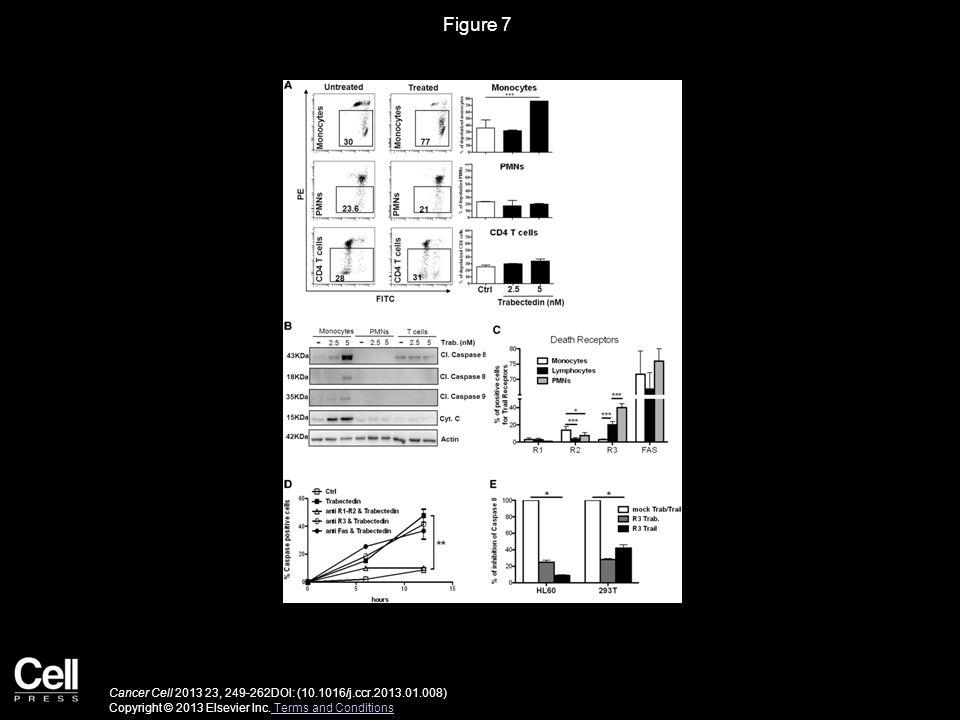 Figure 7 Cancer Cell 2013 23, 249-262DOI: (10.1016/j.ccr.2013.01.008) Copyright © 2013 Elsevier Inc. Terms and Conditions Terms and Conditions