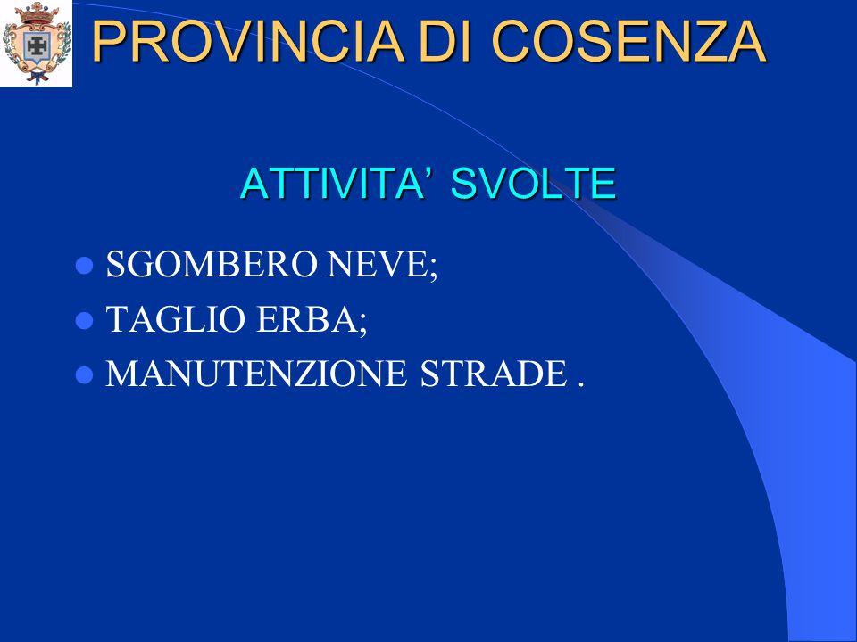 ATTIVITA' SVOLTE SGOMBERO NEVE; TAGLIO ERBA; MANUTENZIONE STRADE. PROVINCIA DI COSENZA