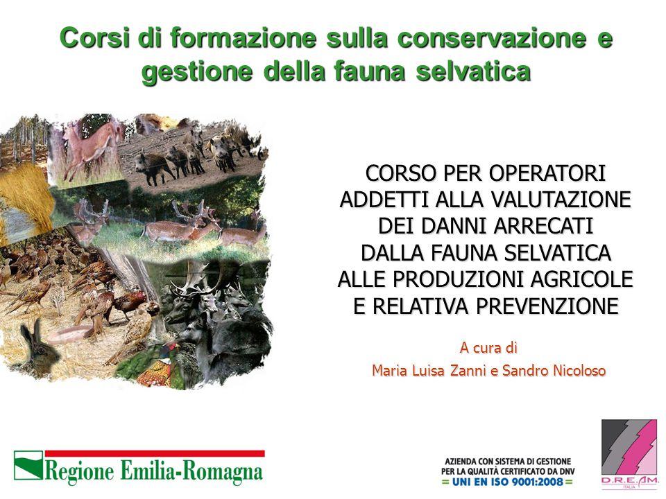 Corsi di formazione sulla conservazione e gestione della fauna selvatica A cura di Maria Luisa Zanni e Sandro Nicoloso CORSO PER OPERATORI ADDETTI ALLA VALUTAZIONE DEI DANNI ARRECATI DALLA FAUNA SELVATICA ALLE PRODUZIONI AGRICOLE E RELATIVA PREVENZIONE