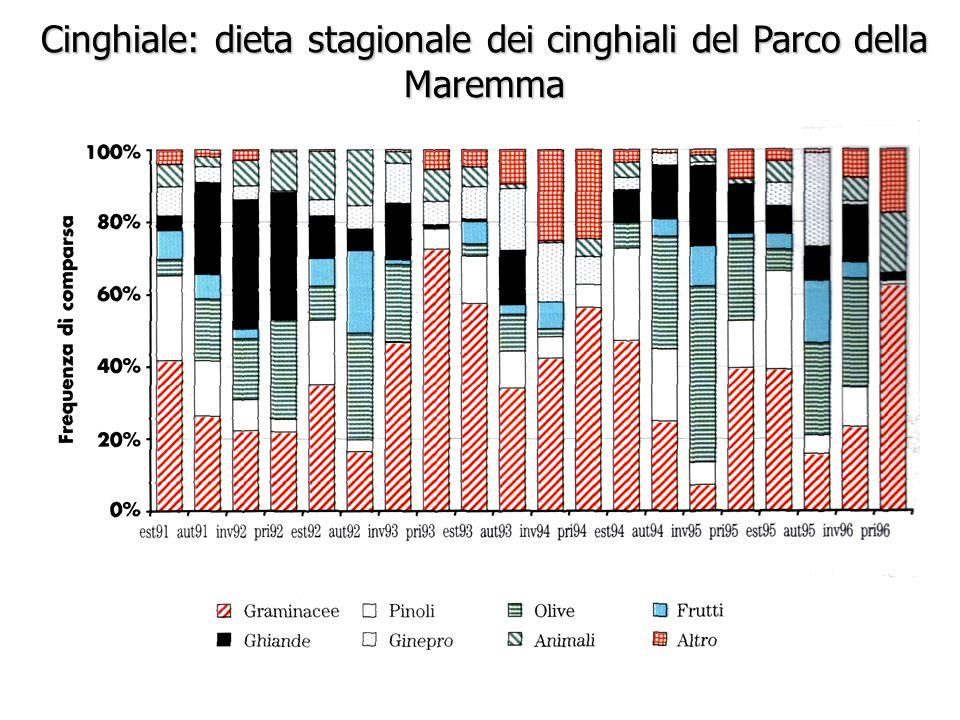 Cinghiale: dieta stagionale dei cinghiali del Parco della Maremma da Massei e Genov