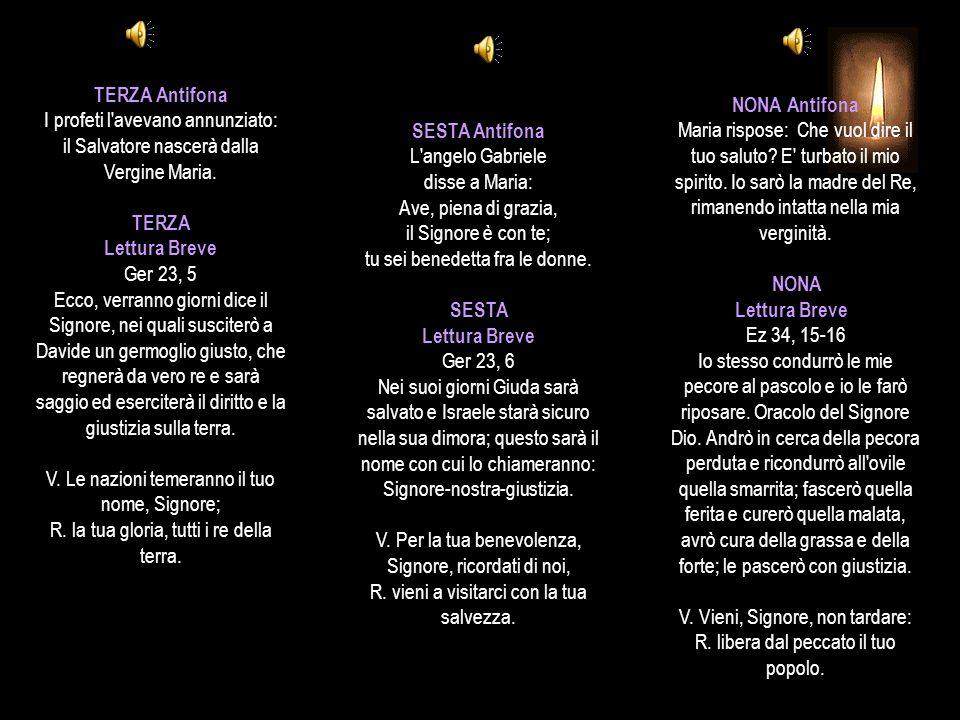 SALMO 73, 13-23 (II) Lamento per la distruzione del tempio Non abbiate paura di quelli che uccidono il corpo (Mt 10, 28).
