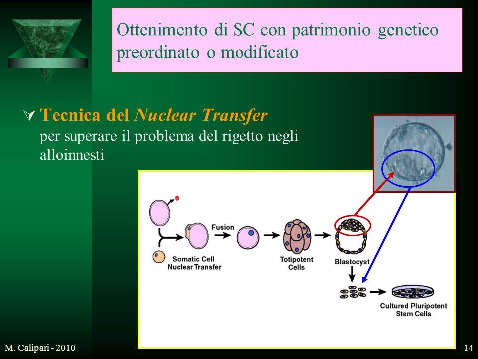 M. Calipari - 201014 Ottenimento di SC con patrimonio genetico preordinato o modificato  Tecnica del Nuclear Transfer per superare il problema del ri
