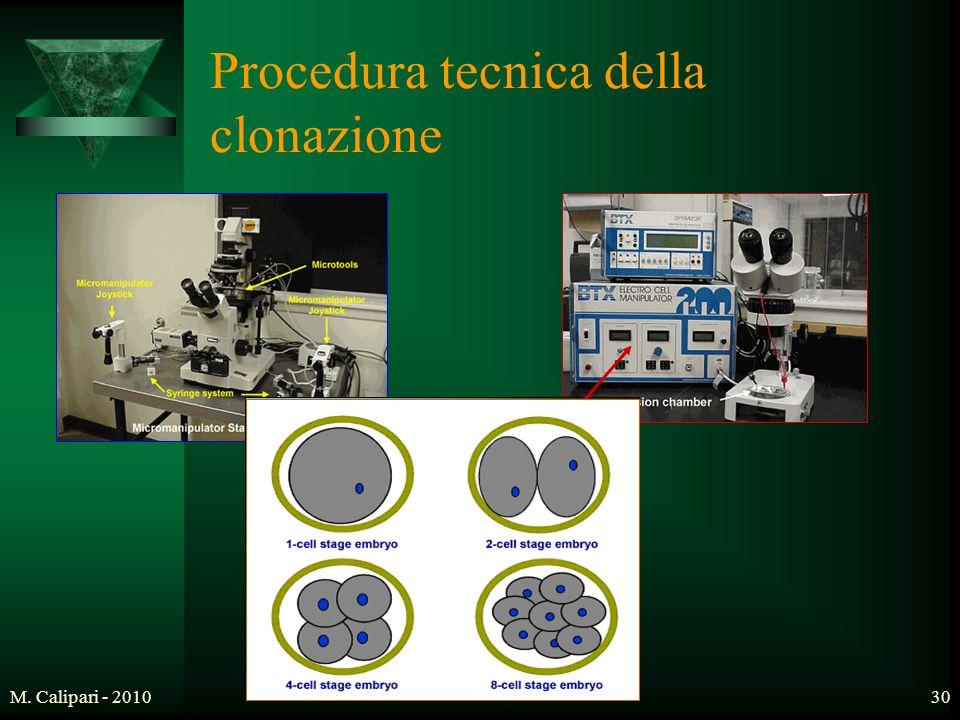 M. Calipari - 201030 Procedura tecnica della clonazione
