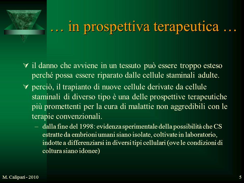 M. Calipari - 20105 … in prospettiva terapeutica …  il danno che avviene in un tessuto può essere troppo esteso perché possa essere riparato dalle ce