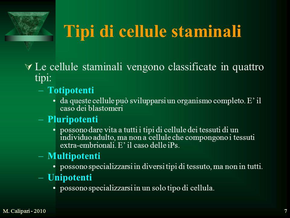 M. Calipari - 20107 Tipi di cellule staminali  Le cellule staminali vengono classificate in quattro tipi: –Totipotenti da queste cellule può sviluppa