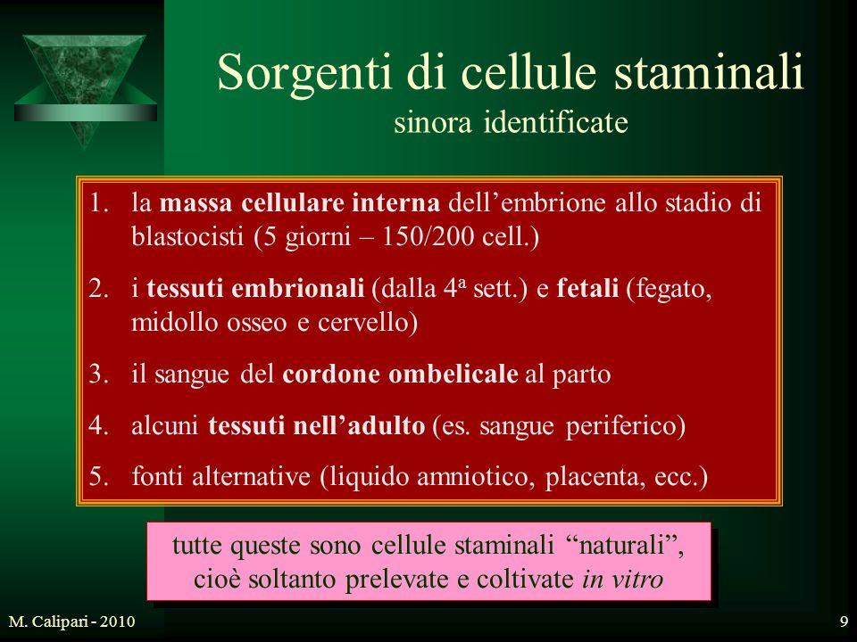 M. Calipari - 20109 Sorgenti di cellule staminali sinora identificate 1.la massa cellulare interna dell'embrione allo stadio di blastocisti (5 giorni