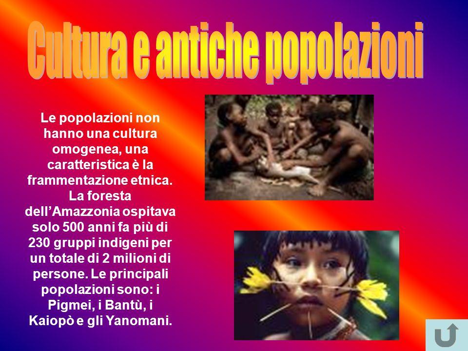 Le popolazioni non hanno una cultura omogenea, una caratteristica è la frammentazione etnica.