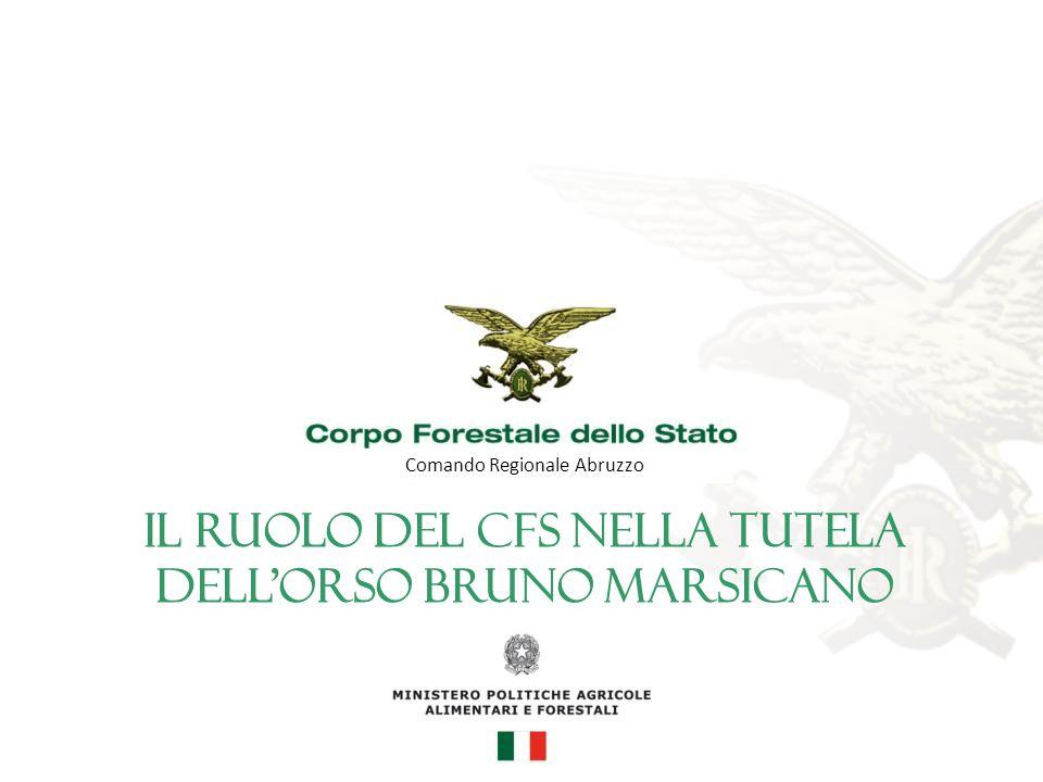 Comando Regionale Abruzzo Il ruolo del CFS nella tutela dell'orso bruno marsicano