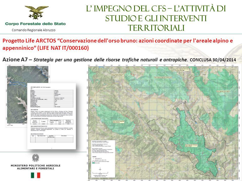 Comando Regionale Abruzzo L' impegno del CFS – l'attività di studio e gli interventi territoriali Progetto Life ARCTOS Conservazione dell orso bruno: azioni coordinate per l areale alpino e appenninico (LIFE NAT IT/000160) Azione A7 – Strategia per una gestione delle risorse trofiche naturali e antropiche.