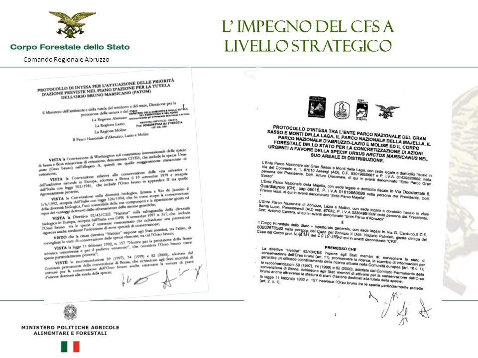 Comando Regionale Abruzzo L' impegno del CFS a livello strategico