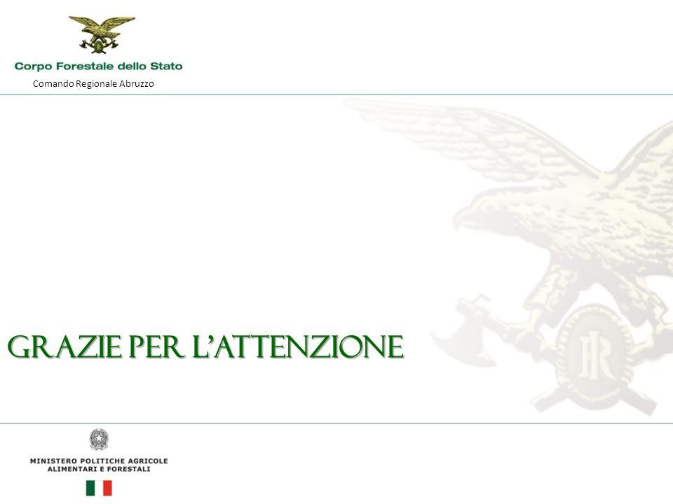 Comando Regionale Abruzzo GRAZIE PER L'ATTENZIONE