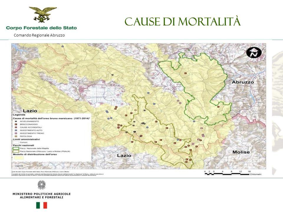 Comando Regionale Abruzzo Cause di mortalità