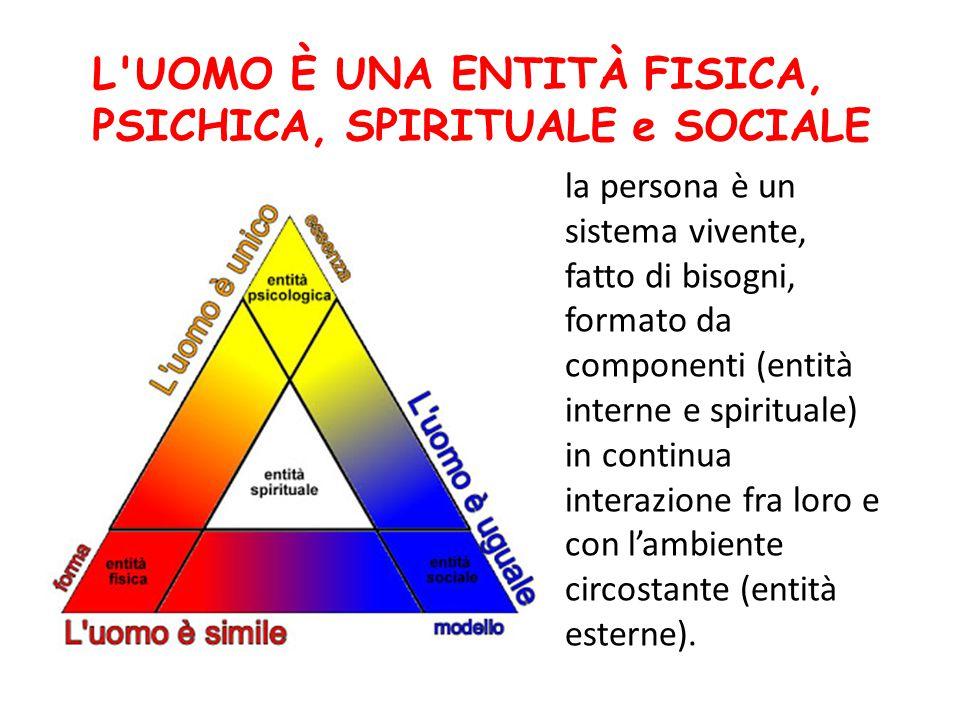la persona è un sistema vivente, fatto di bisogni, formato da componenti (entità interne e spirituale) in continua interazione fra loro e con l'ambien