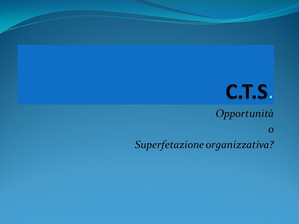 Opportunità o Superfetazione organizzativa?
