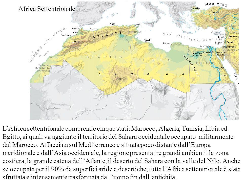 Africa Settentrionale L'Africa settentrionale comprende cinque stati: Marocco, Algeria, Tunisia, Libia ed Egitto, ai quali va aggiunto il territorio d