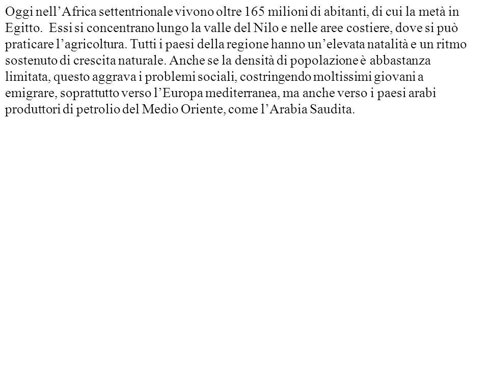 Oggi nell'Africa settentrionale vivono oltre 165 milioni di abitanti, di cui la metà in Egitto. Essi si concentrano lungo la valle del Nilo e nelle ar