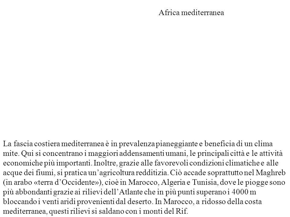 I paesi dell'Africa settentrionale, legati strettamente alla storia del Mediterraneo, sono caratterizzati da alcuni elementi comuni: l'uniformità culturale ed etnica, il netto predominio della religione musulmana e un livello di sviluppo economico superiore al resto del continente africano.