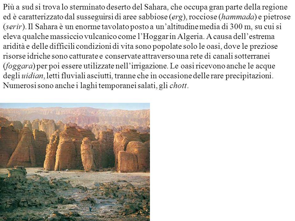 Più a sud si trova lo sterminato deserto del Sahara, che occupa gran parte della regione ed è caratterizzato dal susseguirsi di aree sabbiose (erg), r