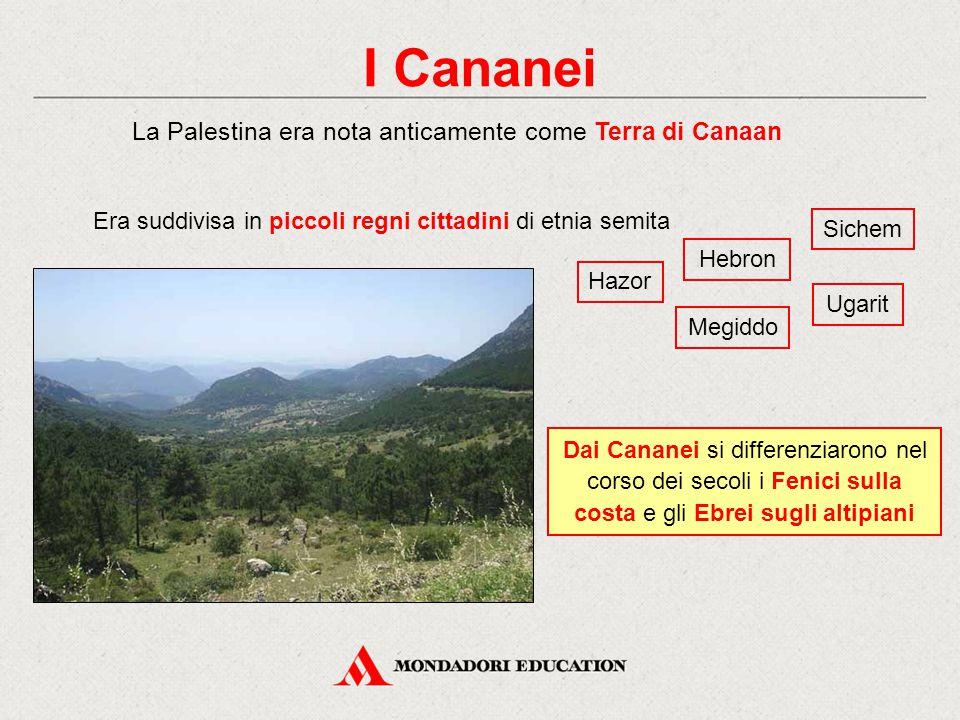I Cananei La Palestina era nota anticamente come Terra di Canaan Dai Cananei si differenziarono nel corso dei secoli i Fenici sulla costa e gli Ebrei