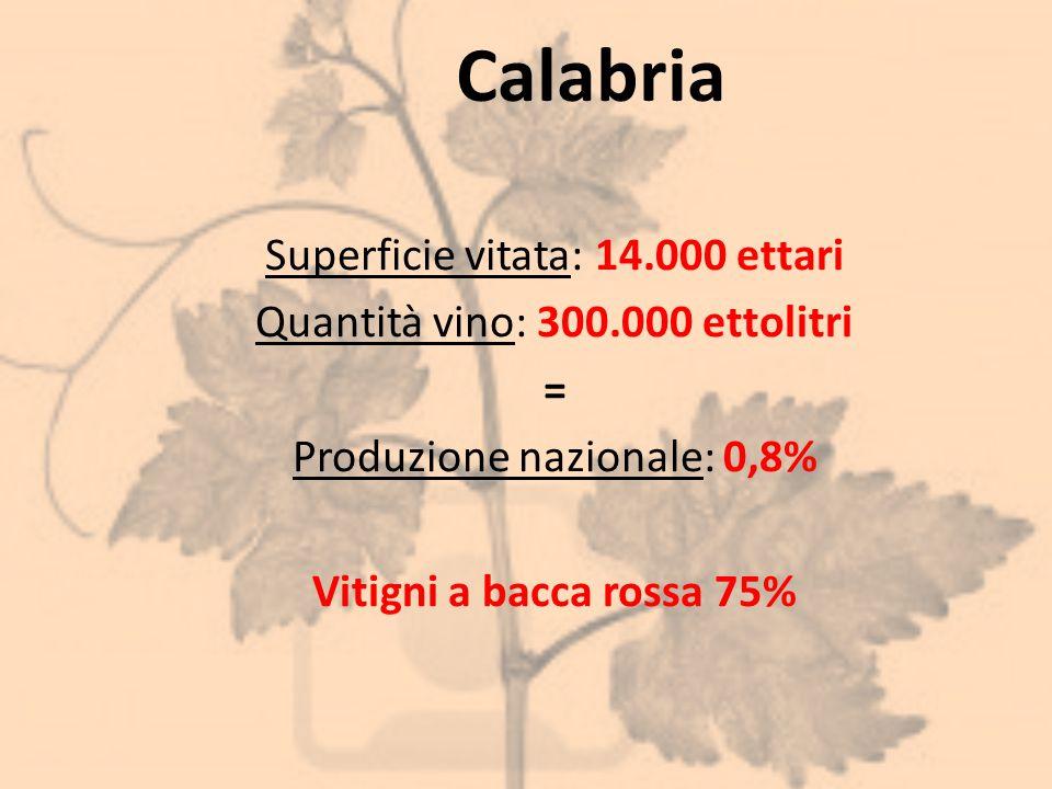 Calabria Superficie vitata: 14.000 ettari Quantità vino: 300.000 ettolitri = Produzione nazionale: 0,8% Vitigni a bacca rossa 75%
