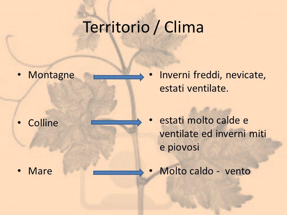 Territorio / Clima Montagne Colline Mare Inverni freddi, nevicate, estati ventilate. estati molto calde e ventilate ed inverni miti e piovosi Molto ca