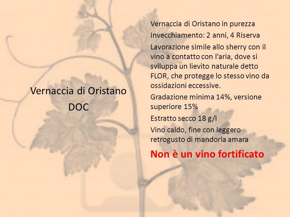 Vernaccia di Oristano DOC Vernaccia di Oristano in purezza Invecchiamento: 2 anni, 4 Riserva Lavorazione simile allo sherry con il vino a contatto con