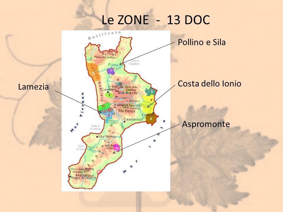 Le ZONE - 13 DOC Pollino e Sila Lamezia Costa dello Ionio Aspromonte