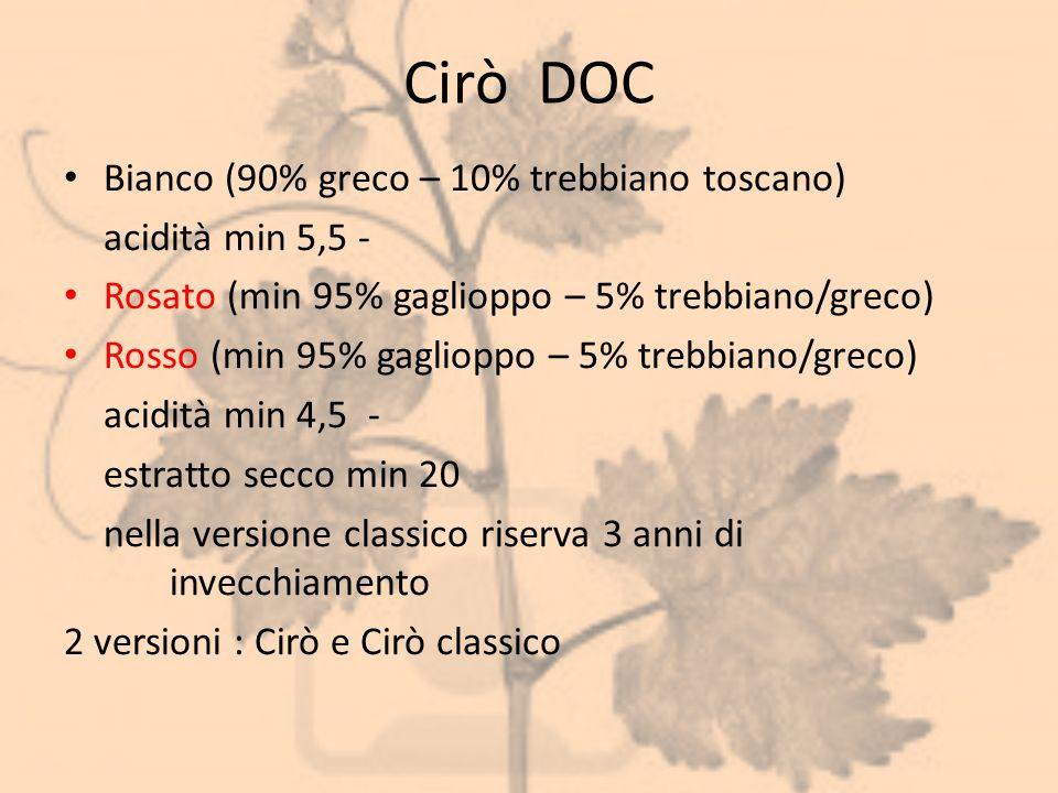 Cirò DOC Bianco (90% greco – 10% trebbiano toscano) acidità min 5,5 - Rosato (min 95% gaglioppo – 5% trebbiano/greco) Rosso (min 95% gaglioppo – 5% tr